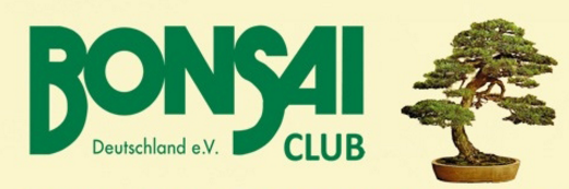 bonsai-club-deutschland-e-v